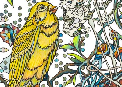 Season of Song – Coloring Book Edition